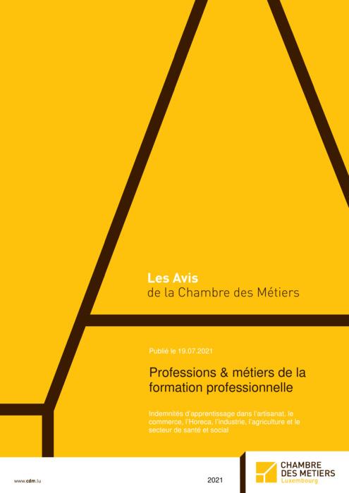 Professions et métiers de la formation professionnelle