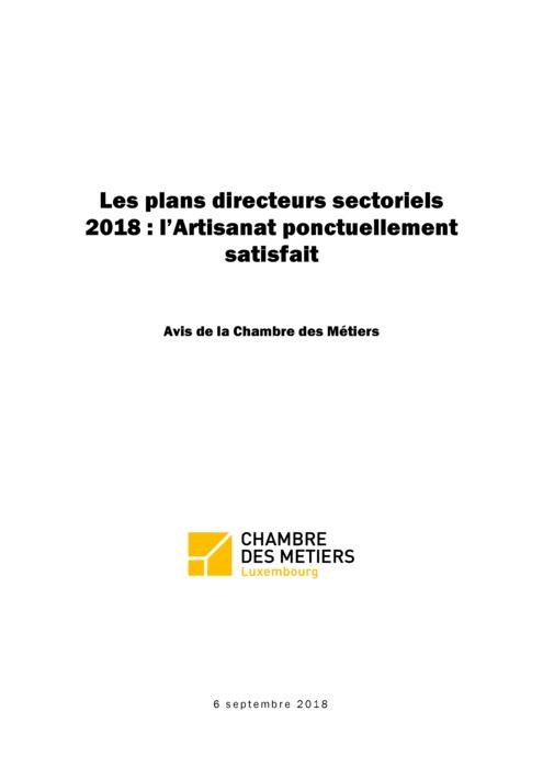 Les plans directeurs sectoriels 2018 : l'Artisanat ponctuellement satisfait
