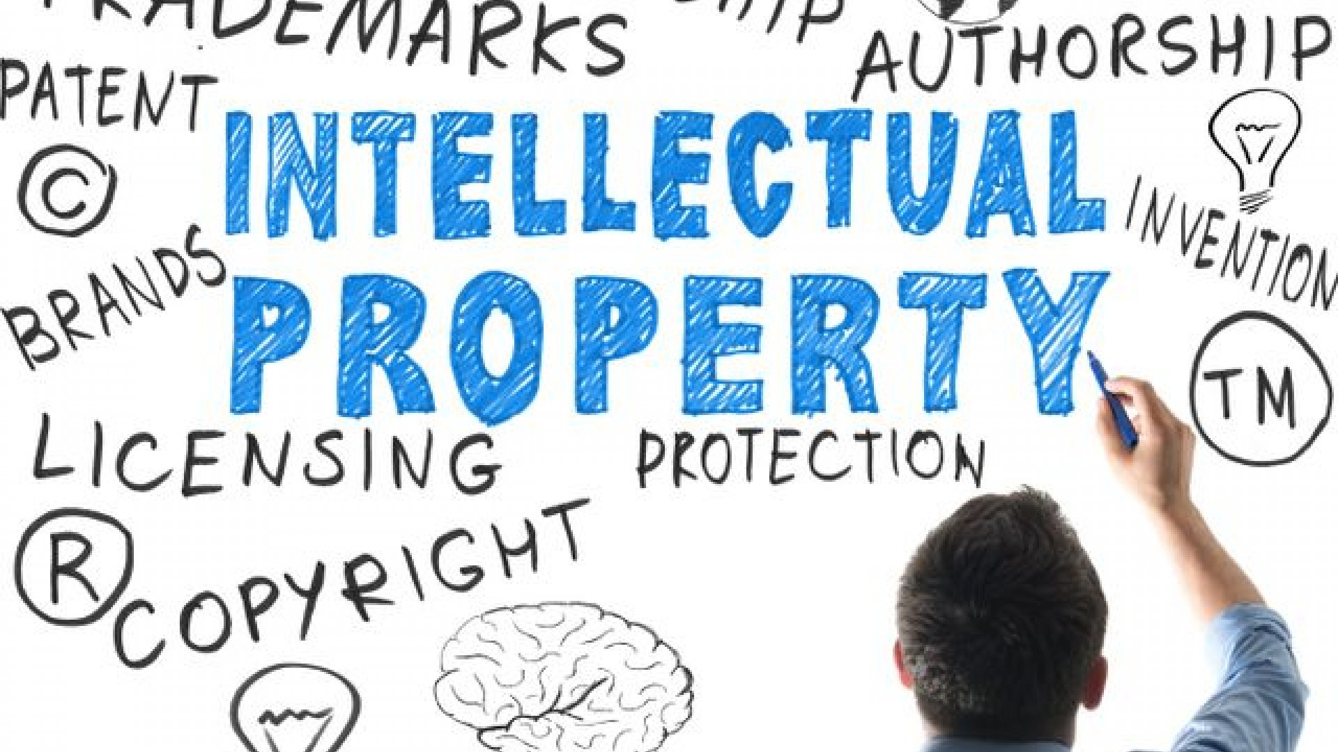Intellectual+property mid